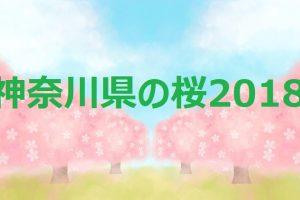神奈川県の桜2018