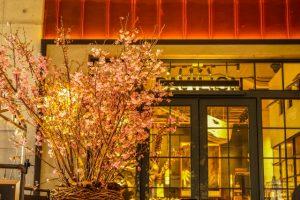 桜カフェのイメージ