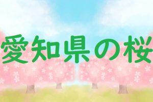 愛知県の桜